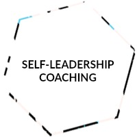 self-leadership-hex